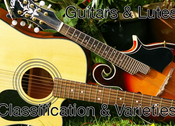 Guitars and Lutes | Classification and Varieties | ChurchMusic.ie