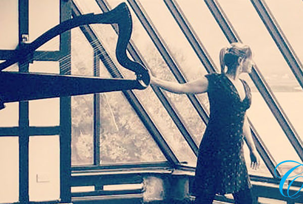 Elaine Hogan | Wedding Harpist | ChurchMusic.ie